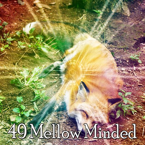 49 Mellow Minded de Best Relaxing SPA Music