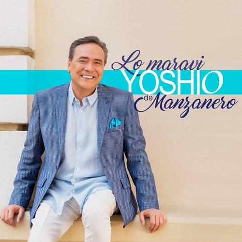 Lo Maravi Yoshio de Manzanero by Yoshio