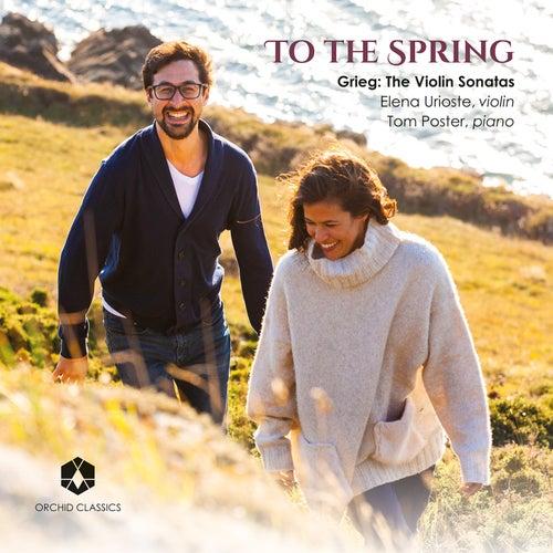 To the Spring by Elena Urioste