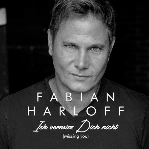 Ich vermiss Dich nicht (Missing you) by Fabian Harloff
