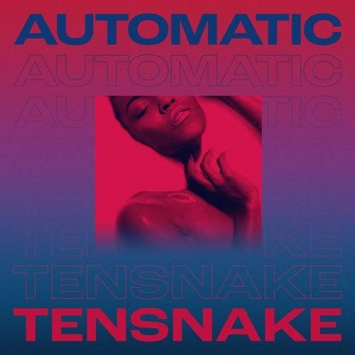 Automatic de Tensnake