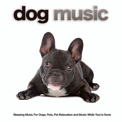 Dog Music: Sleeping Music For Dogs, Pets, Pet Relaxation and Music While You're Gone de Dog Music (1)