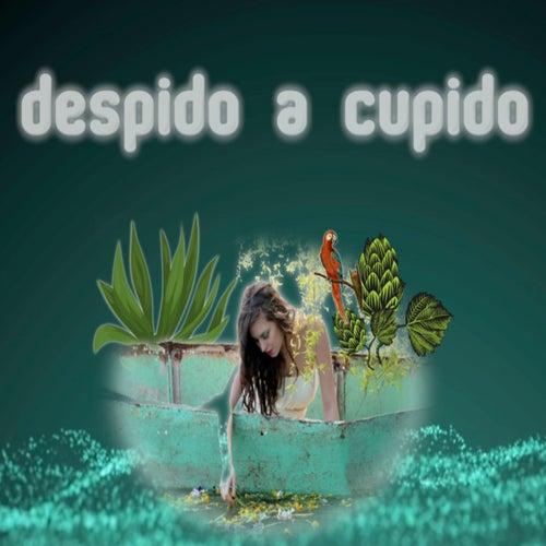 Despido a Cupido van Gera MX