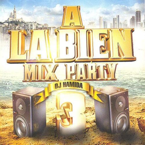 A La Bien Mix Party, Vol. 3 (29 Hits) by DJ Hamida