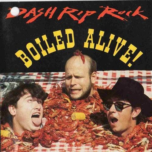 Boiled Alive de Dash Rip Rock