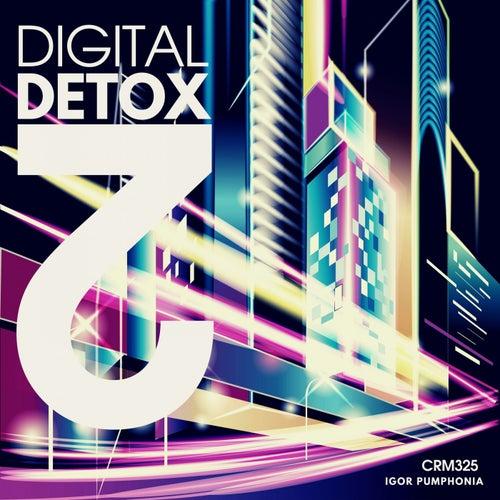Digital Detox 2 de Igor Pumphonia