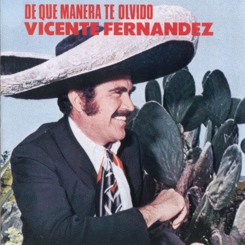 De Que Manera Te Olvido by Vicente Fernández