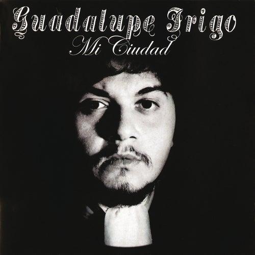 Guadalupe Trigo - Mi Ciudad de Guadalupe Trigo
