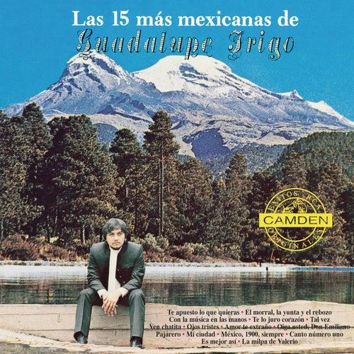 Las 15 Mas Mexicanas De Guadalupe Trigo de Guadalupe Trigo