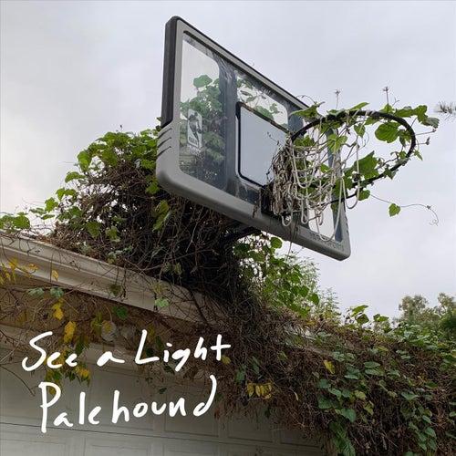 See a Light van Palehound