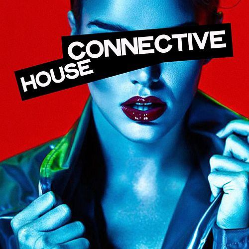 Connective House by Various Artists
