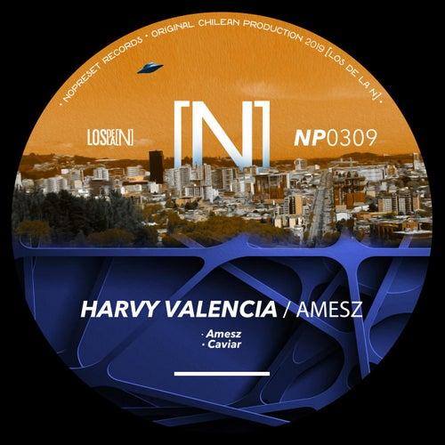 Amesz de Harvy Valencia