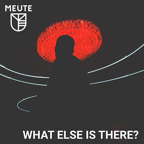 What Else is There? de MEUTE