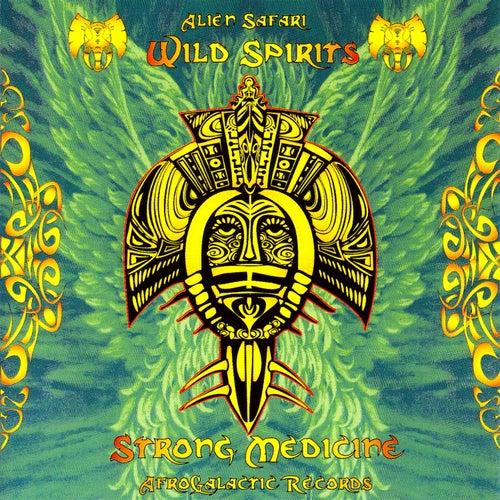 Wild Spirits, Strong Medicine de Various Artists