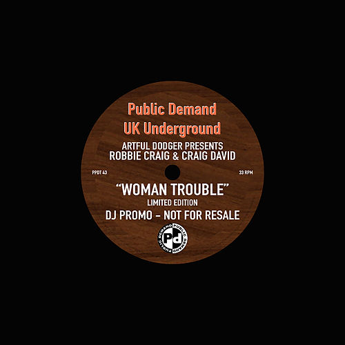 Woman Trouble van Artful Dodger