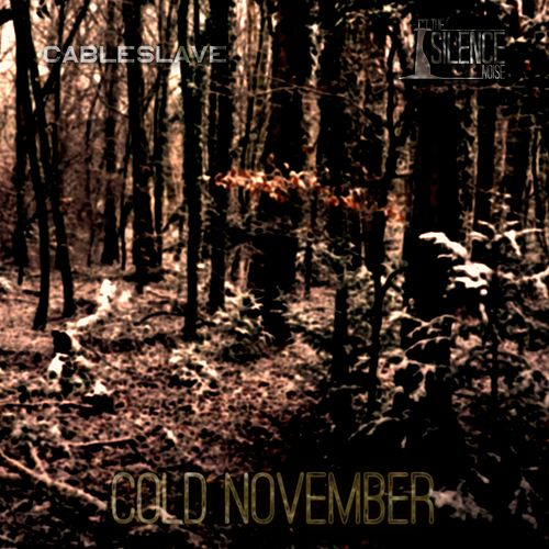 Cold November by The Silence Noise