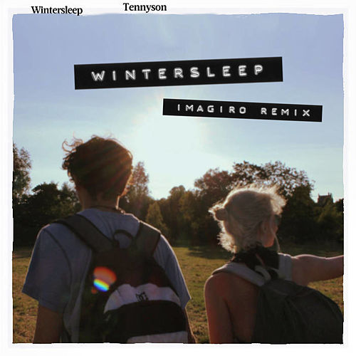 Wintersleep (imagiro Remix) by Tennyson