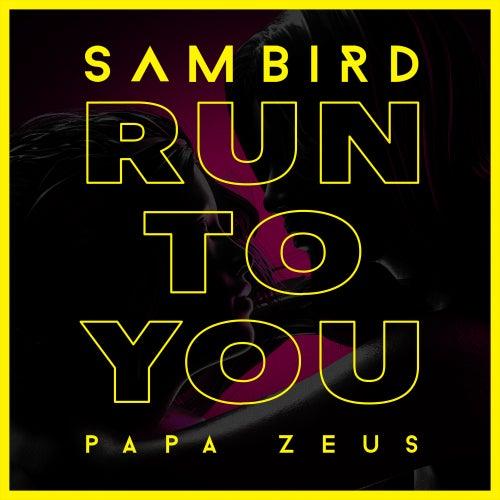 Run To You de Sam Bird