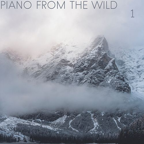 Piano from the Wild, Vol. 1 by Sleep Sound Library