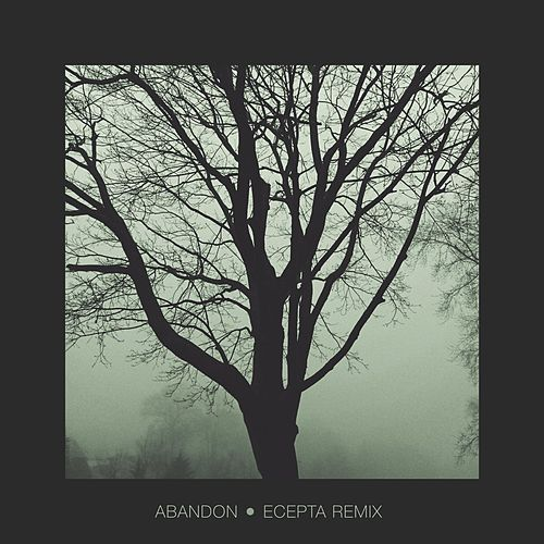 Abandon (Ecepta Remix) by Direct