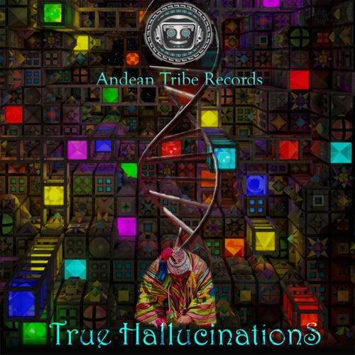 True Hallucination by V/A