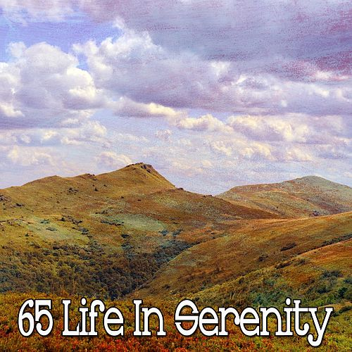 65 Life in Serenity von Lullabies for Deep Meditation
