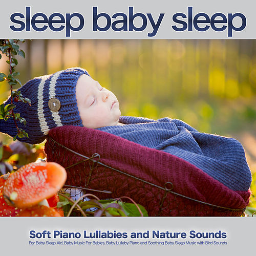 Sleep Baby Sleep: Soft Piano Lullabies and Nature Sounds For Baby Sleep Aid, Baby Music For Babies, Baby Lullaby Piano and Soothing Baby Sleep Music with Bird Sounds by Baby Sleep Sleep