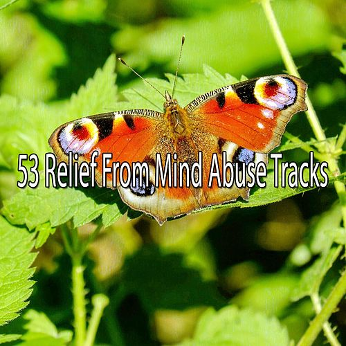 53 Relief from Mind Abuse Tracks de White Noise Research (1)