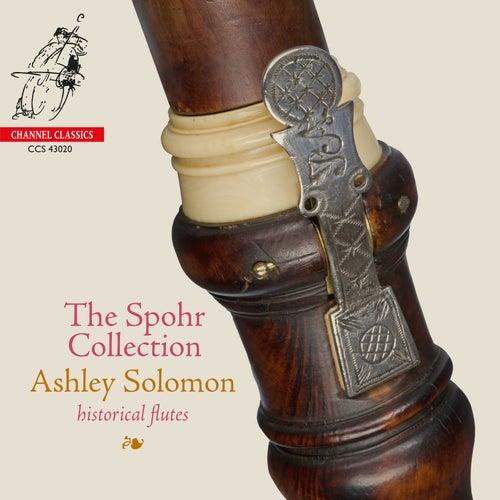 Methodical Sonata No. 3 in E minor TWV41-e2: III. Cunando de Ashley Solomon