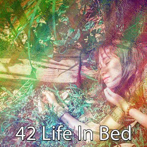 42 Life in Bed de Water Sound Natural White Noise