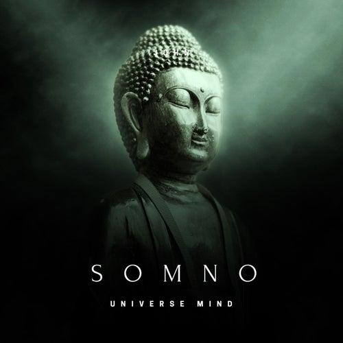 Somno by Universe Mind