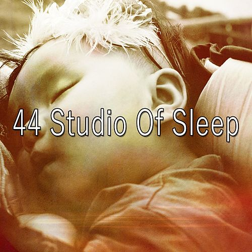 44 Studio of Sleep de Lullaby Land