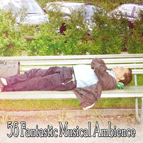 56 Fantastic Musical Ambience by Relaxing Music Therapy
