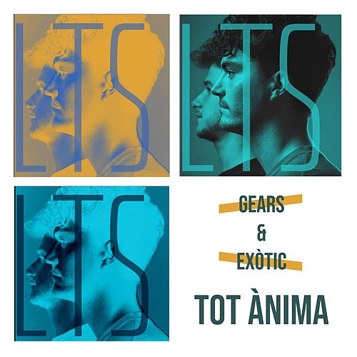 Tot Ànima by the Gears