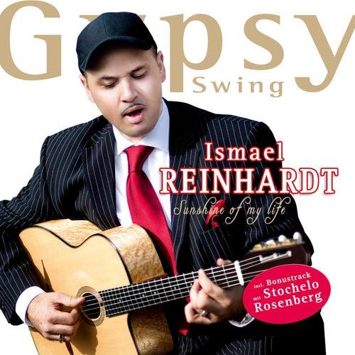 Sunshine of my Life de Ismael Reinhardt