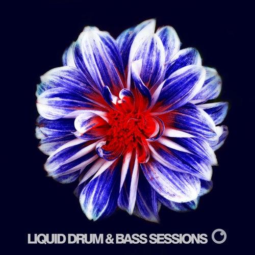 Liquid Drum & Bass Sessions 2019 Vol 6 de Various Artists
