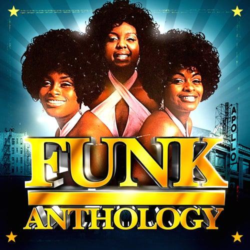 Funk Anthology fra Various Artists