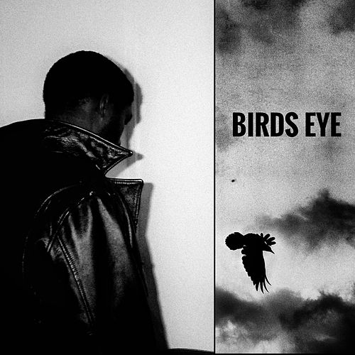 BIRDS EYE von Salomon Faye