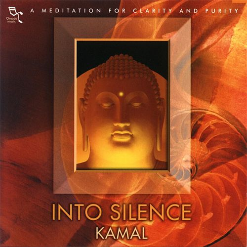 Into Silence by Kamal