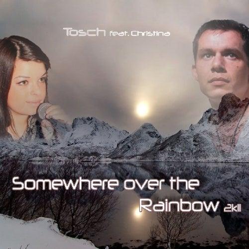 Somewhere Over the Rainbow 2K11 (Remix Edition) de Tosch