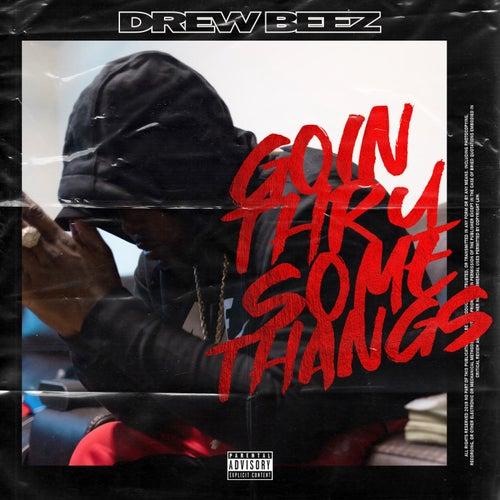 Goin' Thru Some Thangs von Drew Beez