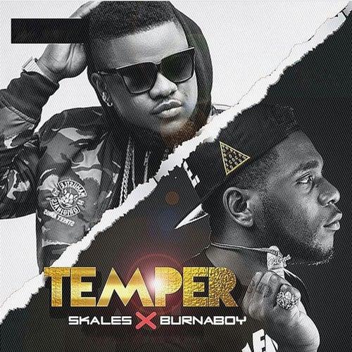 Temper (Remix) by Skales