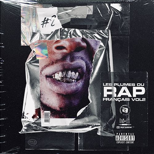 Les plumes du rap français, Vol. 2 de Various Artists