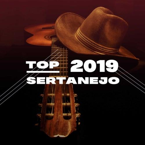 Top Sertanejo 2019 de Various Artists