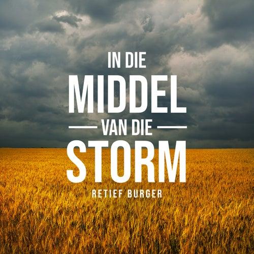 In Die Middel Van Die Storm de Retief Burger