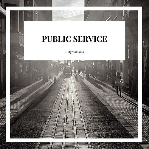 Public Service by Lily Williams