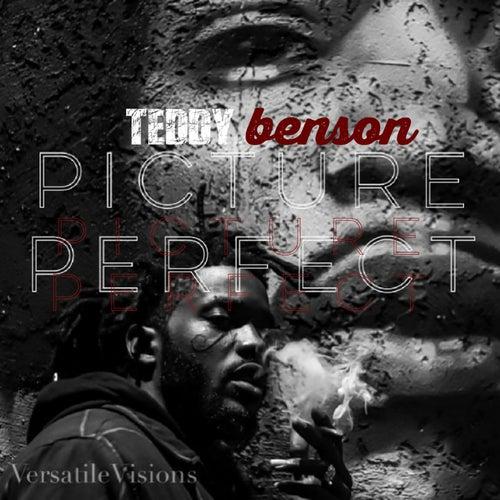Picture perfect von Teddy Benson
