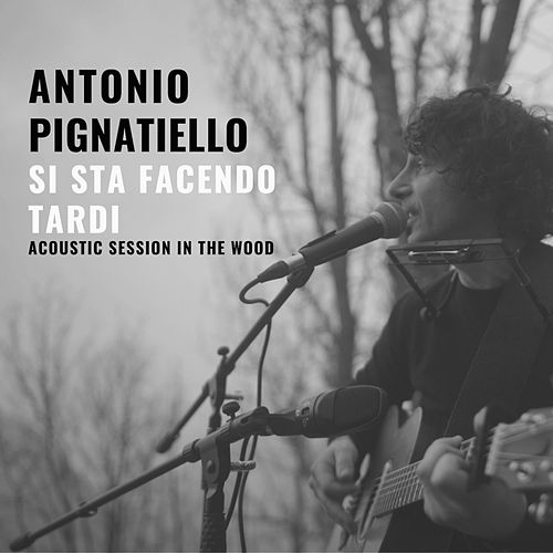 Si sta facendo tardi (Acoustic session in the wood) di Antonio Pignatiello