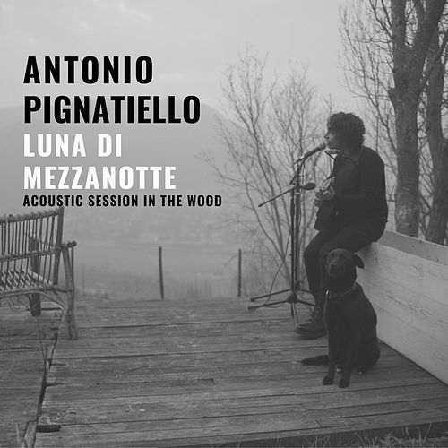 Luna di mezzanotte (Acoustic session in the wood) di Antonio Pignatiello