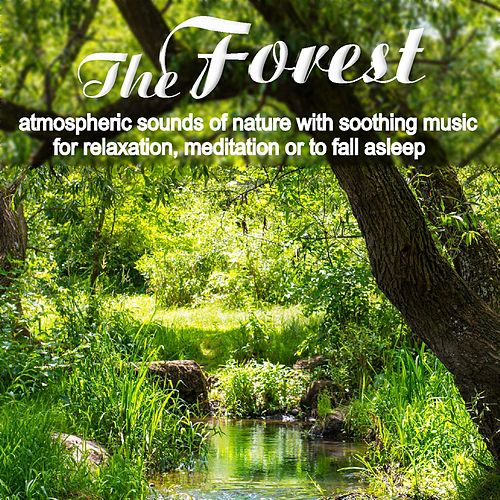 The Forest, atmospheric sounds of nature with soothing music for relaxation, meditation or to fall asleep by Nature Sounds (1)